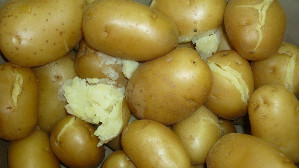 Le patate cotte conservate in frigo sono davvero tossiche?