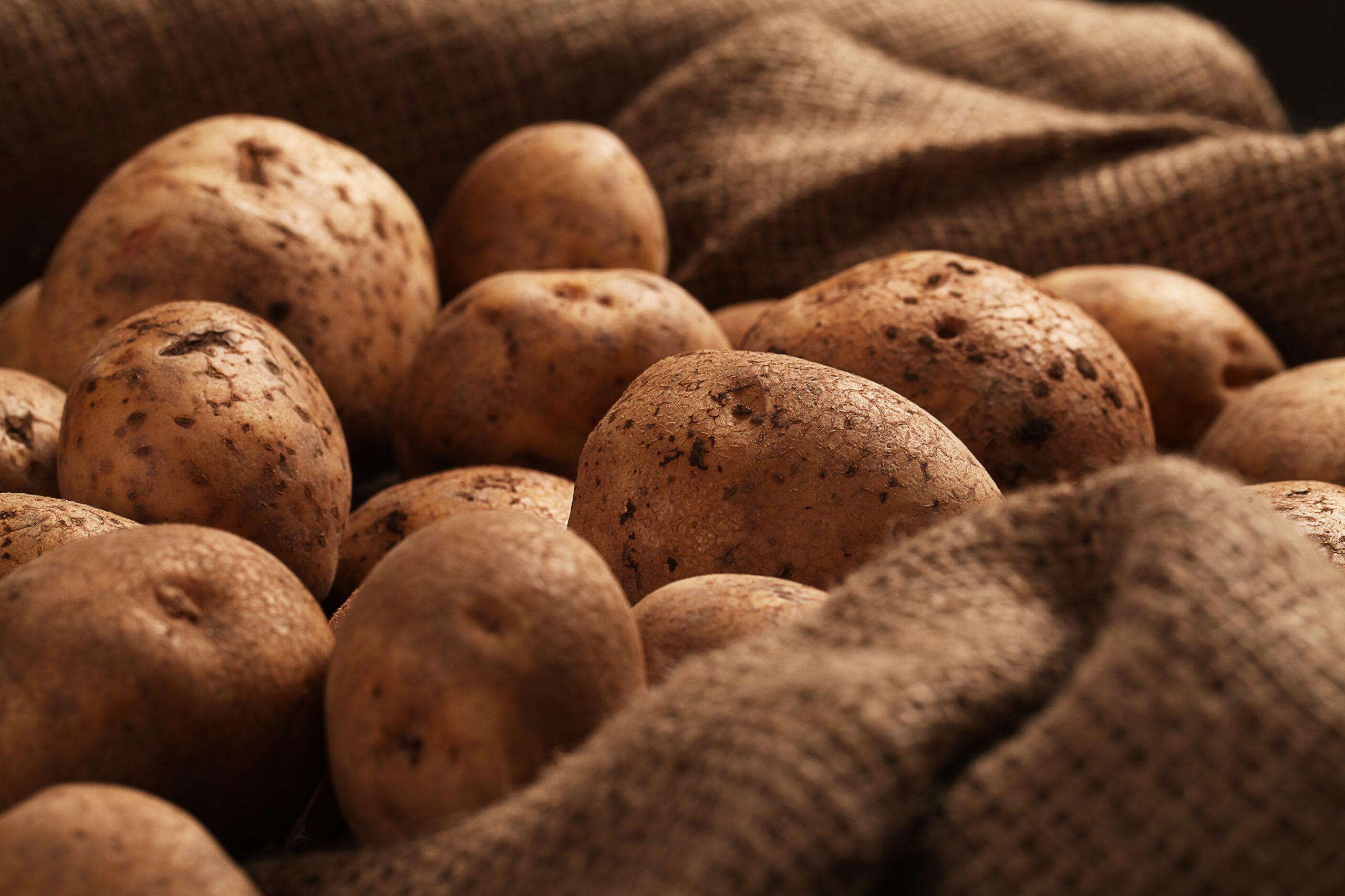 come gratinare le patate al forno